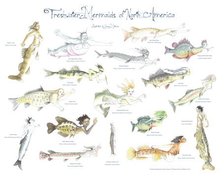 Freshwater Mermaids of North America 2014 (1)